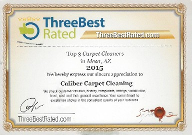 rest assured we were ranked top 3 carpet cleaners in mesa az we do service all surrounding phx cities