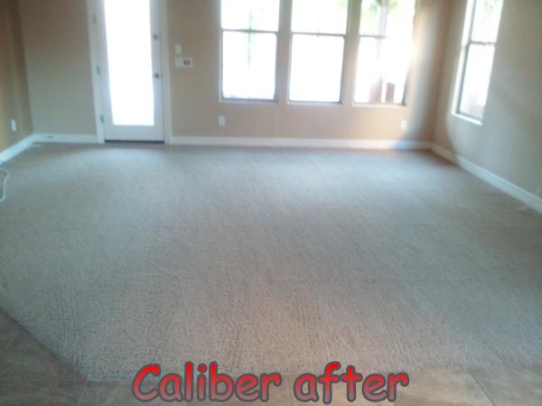 Caliber Carpet Cleaning Upholstery Gilbert Arizona Mesa